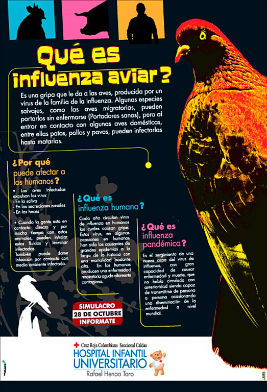 Afiche Hospital Infantil Universitario Ref.: Influenza Aviar